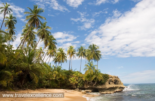 Costa Rica has nearly 300 different beaches along its stunning Pacific and Caribbean coastlines