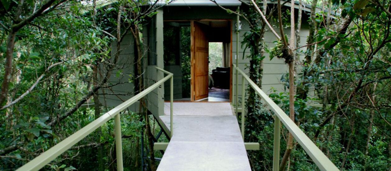 & Hidden Canopy Treehouses