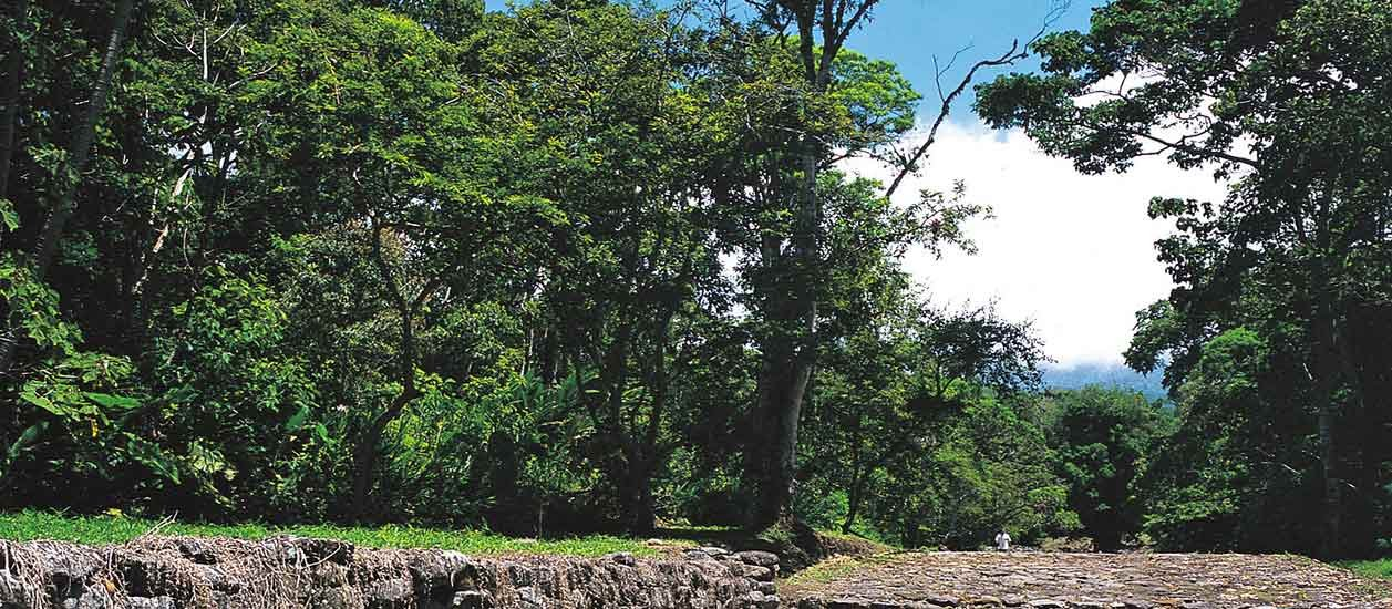 Guayabo Archeological Monument