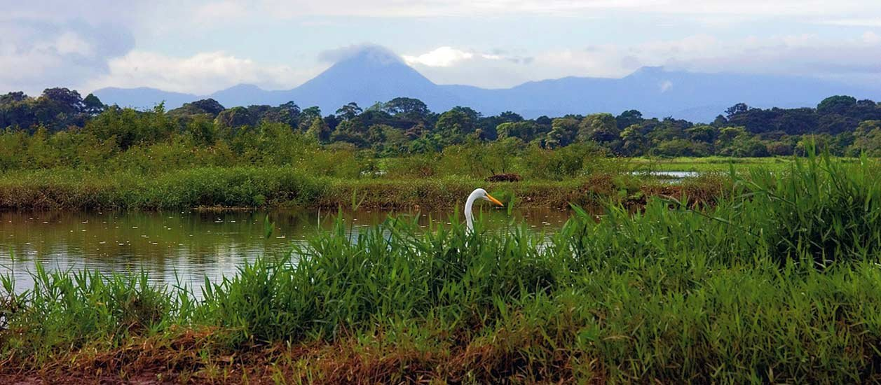 Caño Negro Wildlife Refuge