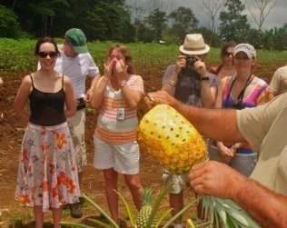 Cultour - Turismo Rural