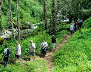 Hike And Horseback Ride To The Waterfalls