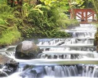 Arenal Volcano & Tabacon Hot Springs