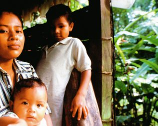 Tour A Las Cataratas De La Reserva Indigena Kekoldi