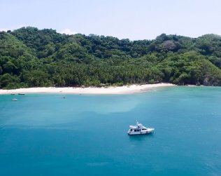 Crucero Isla Tortuga C/calypso