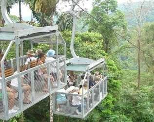 Veragua Rainforest