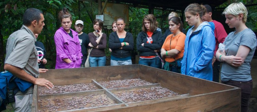 Chocolate Tour at La Tirimbina Biological Reserve