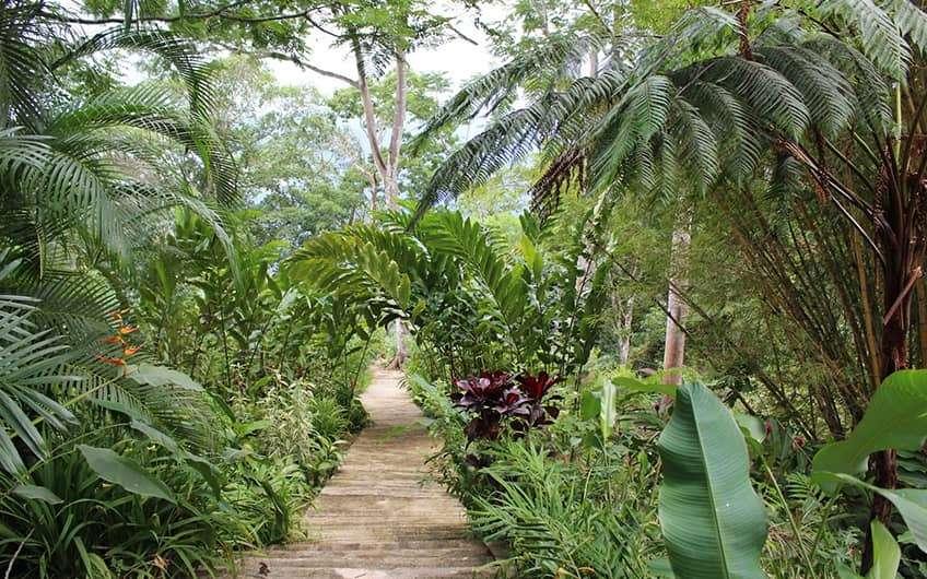 Jaco Beach Costa Rica, Pura Vida Gardens