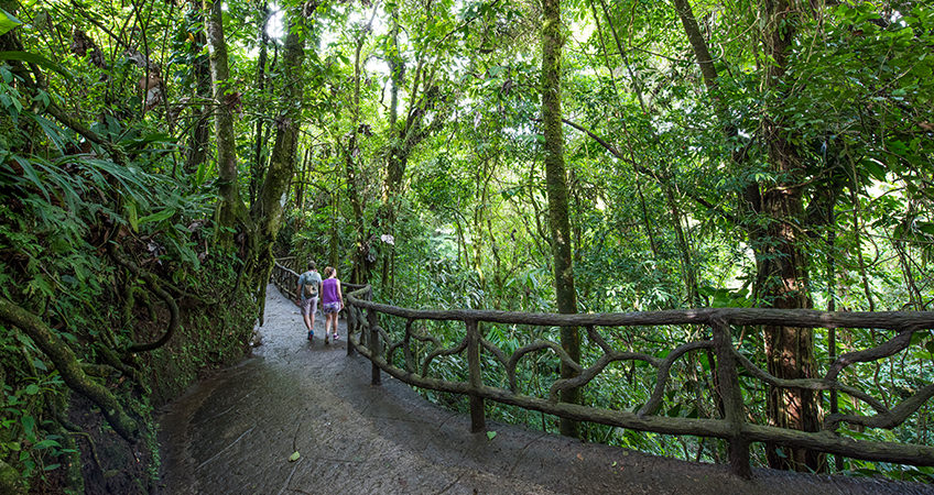 Costa Rica was recognized as the best wildlife and nature destination 2019