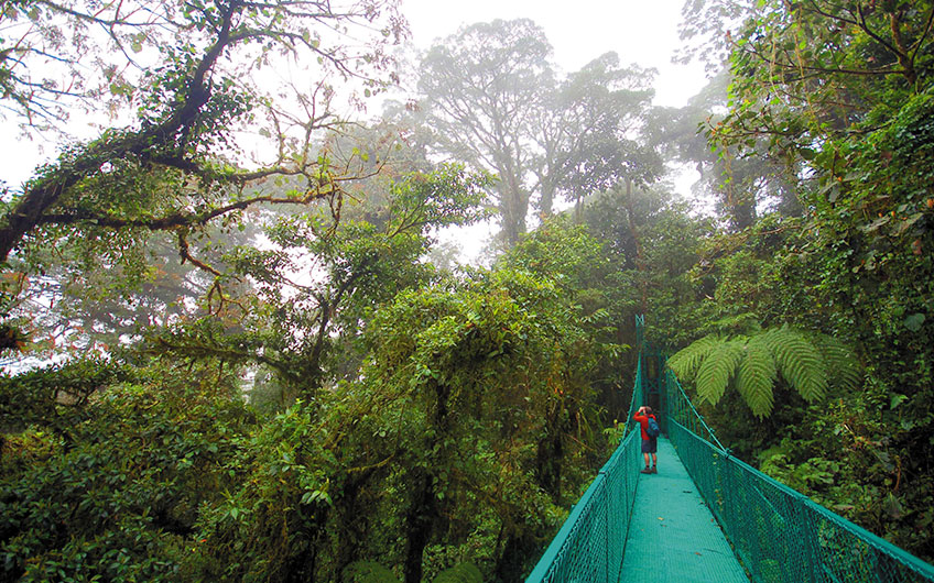On the hanging bridges of Monteverde, a visitor with binoculars revels in the wonderful views offered by the cloud forest.