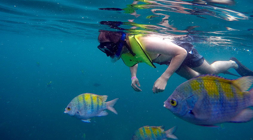 Costa Rica Family Vacations: Tortuga Island tour Snorkeling