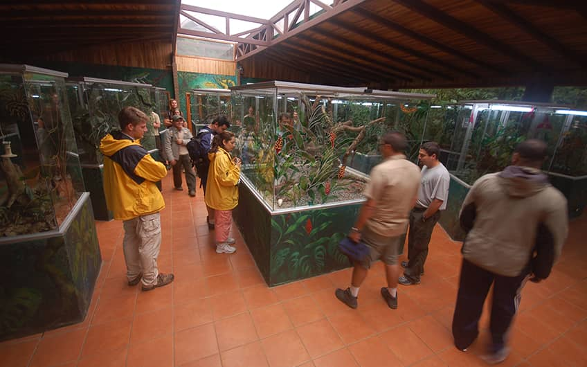 Monteverde Costa Rica, Herpetarium