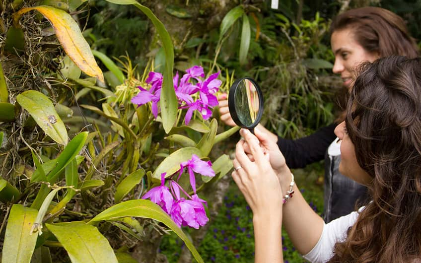 Monteverde Costa Rica, Monteverde Orchid Garden