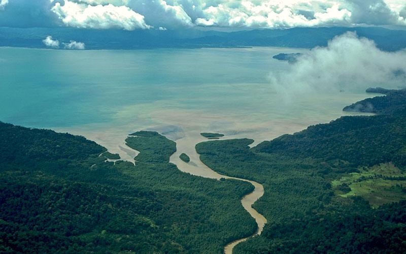 Tortuguero Parque Nacional, Costa Rica