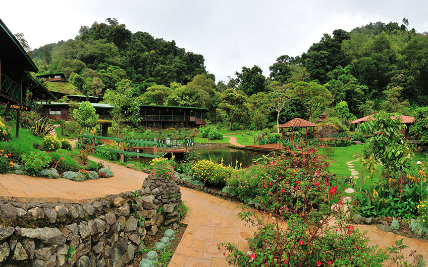 Trogon Lodge in San Gerardo de Dota Costa Rica