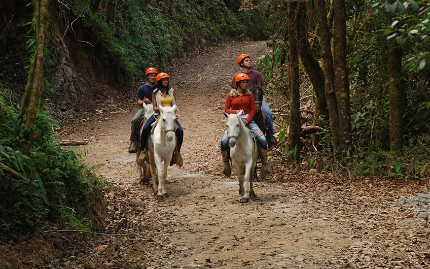 Horseback Riding in San Gerardo de Dota Costa Rica
