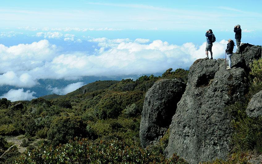 Visit Los Quetzales National Park in San Gerardo de Dota Costa Rica