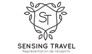 Logo Sensing Travel