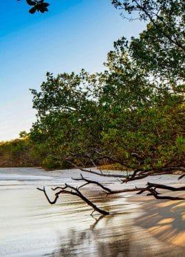 Guanacaste and Liberia Costa Rica