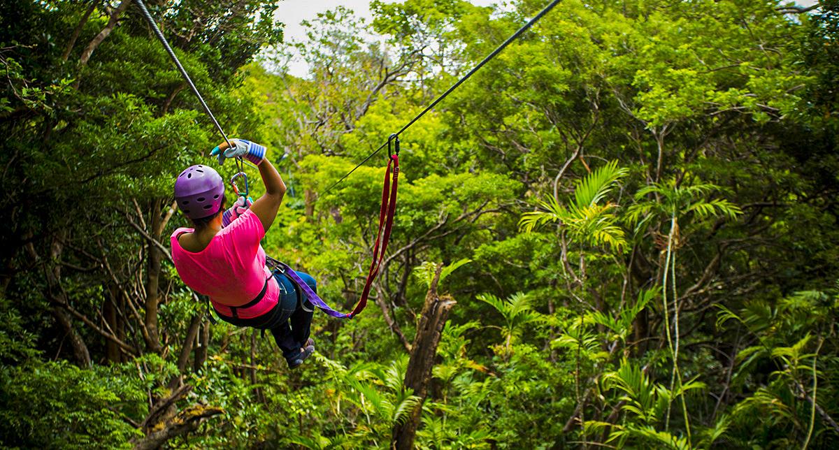 Tours de Canopy o tirolesa en Costa Rica