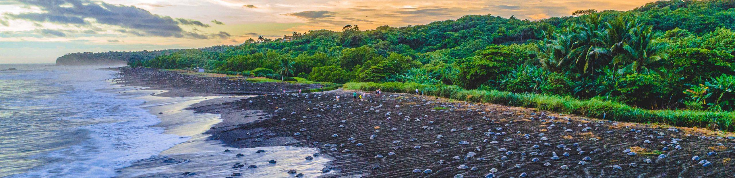 Guía de ecoturismo en Costa Rica