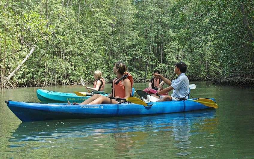 Jaco Beach Costa Rica, Kayaking durch die Mangroven