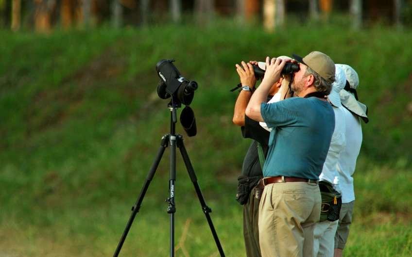 Vogelbeobachter aus der ganzen Welt lieben die Touren in Guanacaste Costa Rica, da das Gebiet reich an Biodiversität und Vogelarten ist.