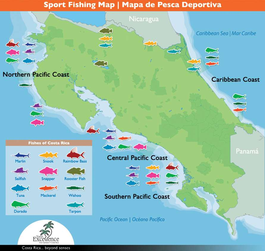 Costa rica sport fishing map fishes by zone