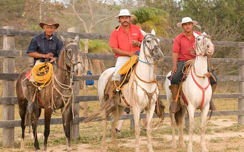 Es ist üblich, die berühmten Sabaneros (oder Viehzüchter) zu beobachten, wenn man hier Urlaub macht. Sie sind ikonische Wahrzeichen der Provinz Guanacaste.