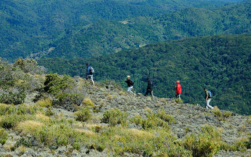 Walking to Cerro de la Muerte in San Gerardo de Dota Costa Rica