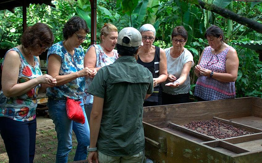 Sarapiquí Costa Rica Travel Guide: Chocolate tour in Tirimbina