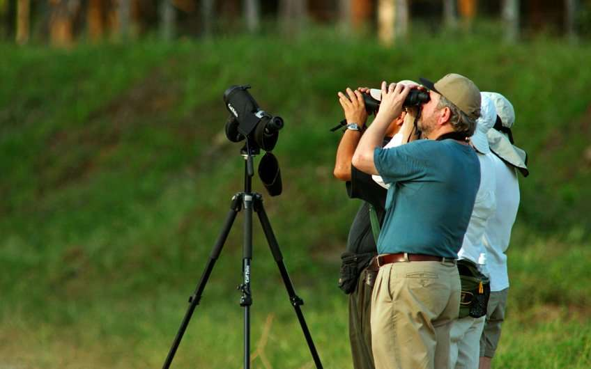 Birdwatchers from all around the world love the tours in Guanacaste Costa Rica as the area is rich in biodiversity and bird species.