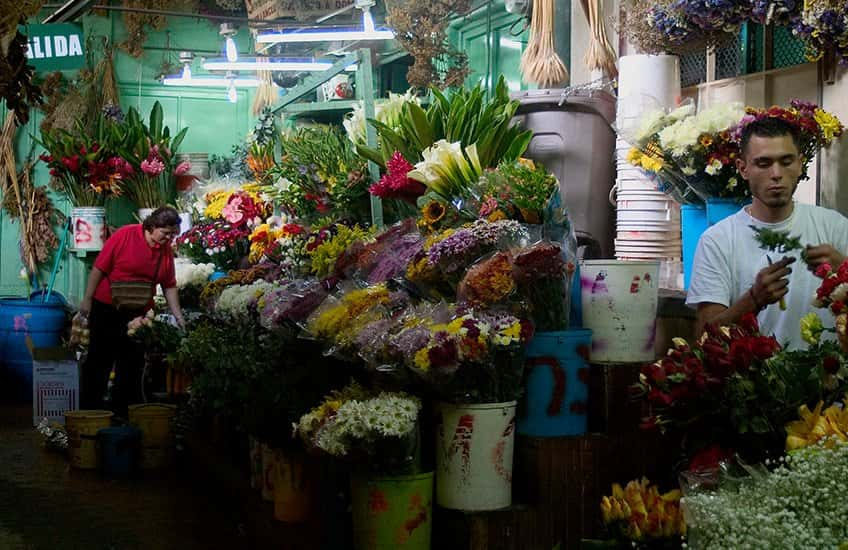 The San Jose Costa Rica market offers a wide variety of local products, farm vegetables, flowers, handmade crafts, and more.