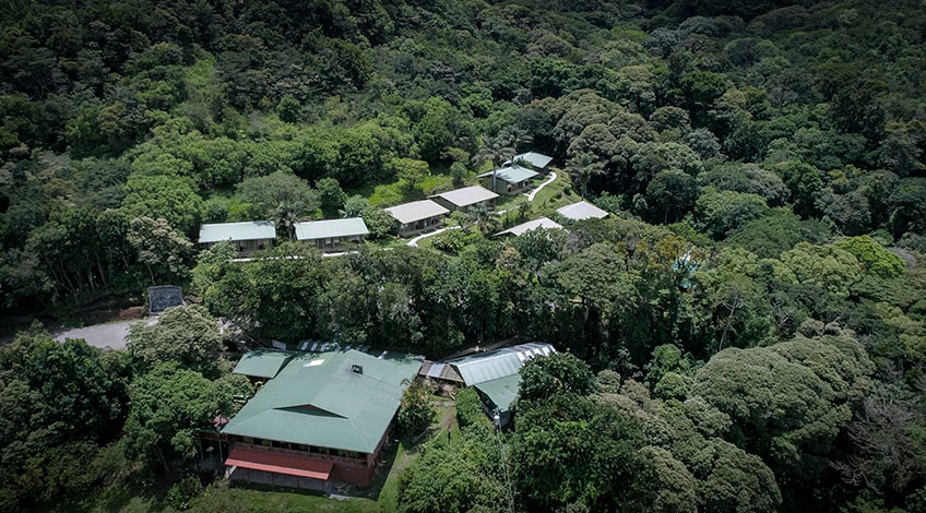 Costa Rica, Monteverde Cloud Forest: Monteverde Cloud Forest Lodge