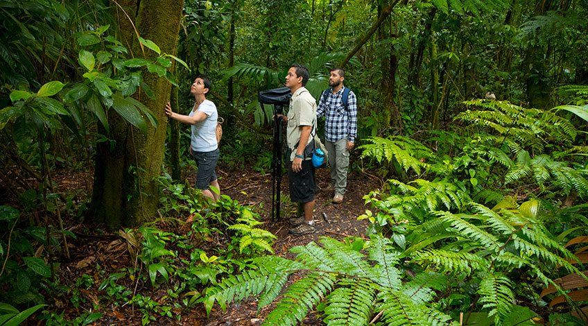 Costa Rica Tours: one-day activities to enjoy in Arenal: Hiking in Arena Volcano national park