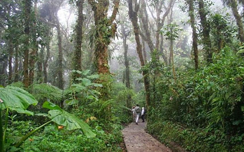 Santa Elena Reserve