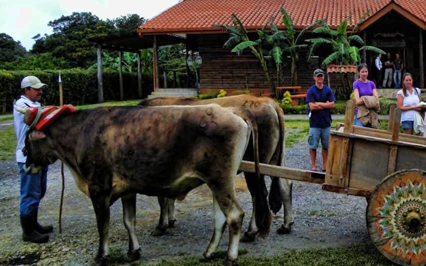 Monteverde Costa Rica, Don Juan Coffee Tour