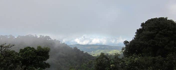 Monteverde Costa Rica Travel Guide