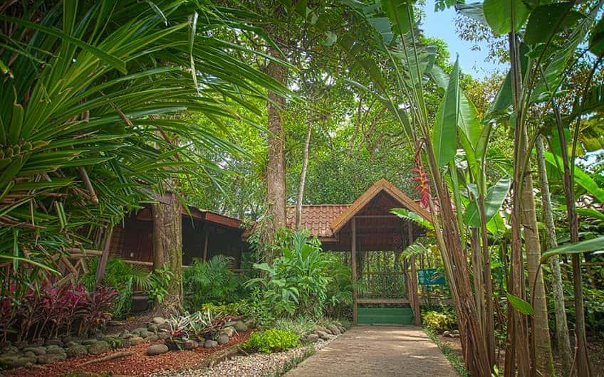 Tortuguero Costa Rica, Pachira Lodge
