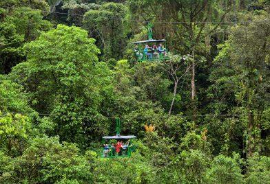Aerial Tram tour