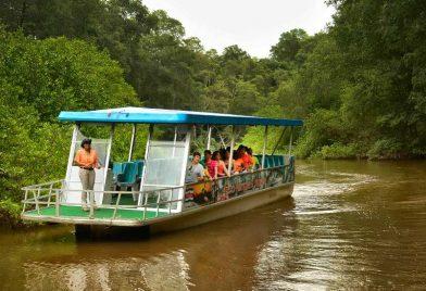 Paseo en bote y aventura de cocodril