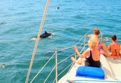 Catamaran Adventure in Guanacaste
