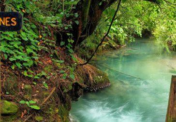 Caminata a Rio Celeste