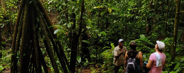 Costa Rica Reaches Global Positioning as a Reference in Sustainable Tourism