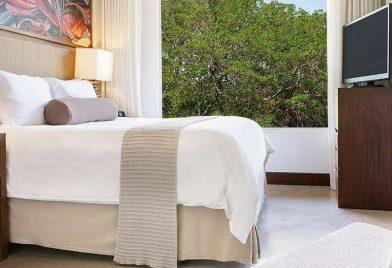 Hotel El Mangroove room