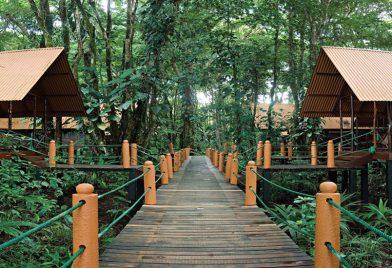 Bungalows Evergreen Lodge